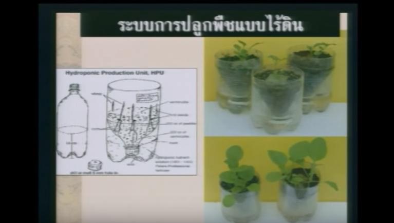 การปลูกพืชไร้ดิน ตอนที่1ความรู้เบื้องต้นเกี่ยวกับการปลูกพืชไร้ดิน